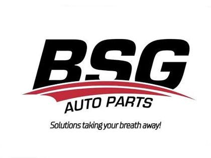 BSG üreticisi resmi
